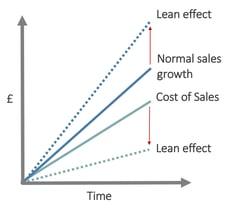 Effetti Lean Marketing